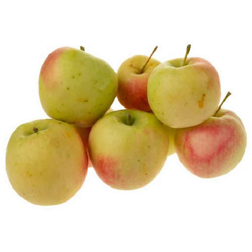 سیب گلاب ۱ کیلوگرمی